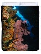 Sea Fans And Crinoid, Fiji Duvet Cover