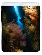 Sea Fans, Fiji Duvet Cover