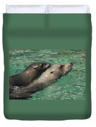 Sea Lions Duvet Cover