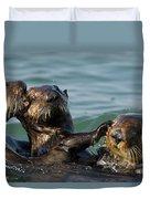 Sea Otter Enhydra Lutris Bachelor Male Duvet Cover