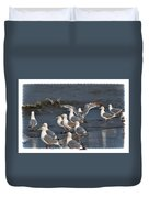 Seagulls Gathering Duvet Cover