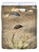 Seahells V3 Duvet Cover