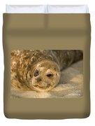 Seal 1 Duvet Cover