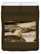 Seal 4 Duvet Cover