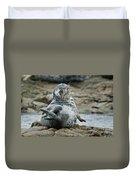 Seal Stretch Duvet Cover
