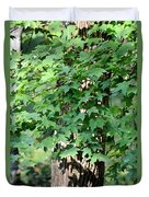 Shadows Of The Sweet Gum Duvet Cover