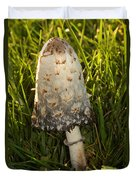 Shaggy Mane Mushroom Growing Duvet Cover