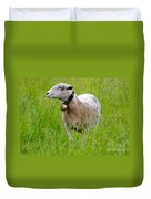 Sheep With A Bell Duvet Cover