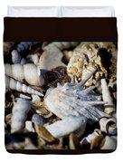 Shelly Beach V2 Duvet Cover