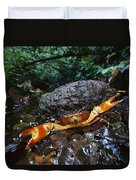 Short-tailed Crab Potamocarcinus Sp Duvet Cover