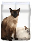 Siamese Cats Duvet Cover