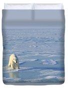 Single Polar Bear Duvet Cover