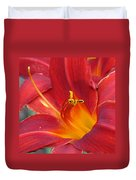 Single Red Lily 2 Duvet Cover