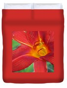 Single Red Lily Closeup Duvet Cover