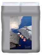 Sky Reflection Leaves And Rocks Duvet Cover
