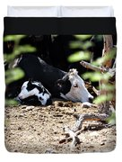 Sleepy Arizona Cows Duvet Cover