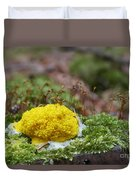 Slime Mould Duvet Cover