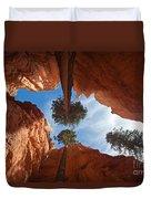 Slot Canyon Duvet Cover