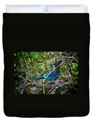 Small Blue Jay Of California Duvet Cover