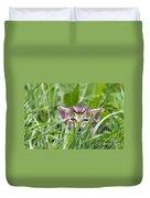 Small Kitten In The Grass Duvet Cover