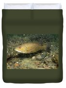 Smallmouth Bass Protecting Eggs Duvet Cover