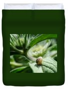 Snail On The Leaf Duvet Cover