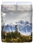 Snow Atop The Superstitions Duvet Cover
