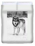 Snow Wolf Duvet Cover