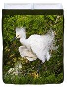 Snowy Egret In Breeding Plumage Duvet Cover