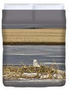 Snowy Owl Perched Frozenpond Duvet Cover
