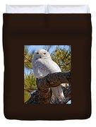 Snowy Owl Resting Duvet Cover