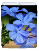 Soft Blue Plumbago  Duvet Cover