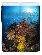Soft Coral And Sea Fan, Fiji Duvet Cover