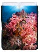 Soft Coral In Raja Ampat, Indonesia Duvet Cover
