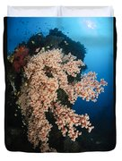 Soft Coral On The Liberty Wreck, Bali Duvet Cover