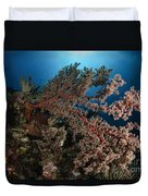 Soft Coral Reef Seascape, Indonesia Duvet Cover