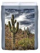 Sonoran Desert II Duvet Cover