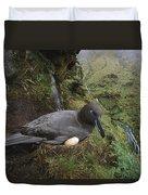 Sooty Albatross Phoebetria Fusca Duvet Cover