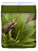 Southern Frog Newly Discovered Species Ecuador Duvet Cover