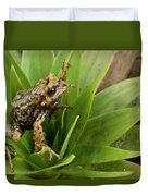 Southern Frog Pristimantis Sp, Newly Duvet Cover