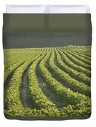 Soybean Crop Ready To Harvest Duvet Cover