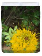 Yellow Bee Plant Sparks Duvet Cover