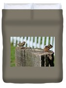 Sparrow And Chipmunk Coexist Duvet Cover