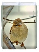 Sparrow On A Twig Duvet Cover