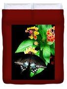 Spice Bush Swallowtail  Duvet Cover