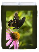 Spicebush Swallowtail Butterfly And Coneflower Duvet Cover