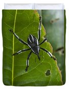 Spider Weevil Papua New Guinea Duvet Cover