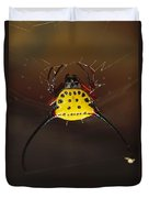 Spiked Spider Gasteracantha Sp In Web Duvet Cover