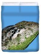 Spiny Chameleon Chamaeleo Verrucosus Duvet Cover