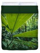 Spiral Ginger Costus Pulverulentus Duvet Cover